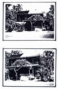 ที่ดินพร้อมสิ่งปลูกสร้างหลุดจำนอง ธ.ธนาคารกรุงไทย นราธิวาส ระแงะ เฉลิม