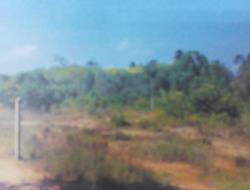 ที่ดินหลุดจำนอง ธ.ธนาคารกรุงเทพ นราธิวาส เมืองนราธิวาส โคกเคียน